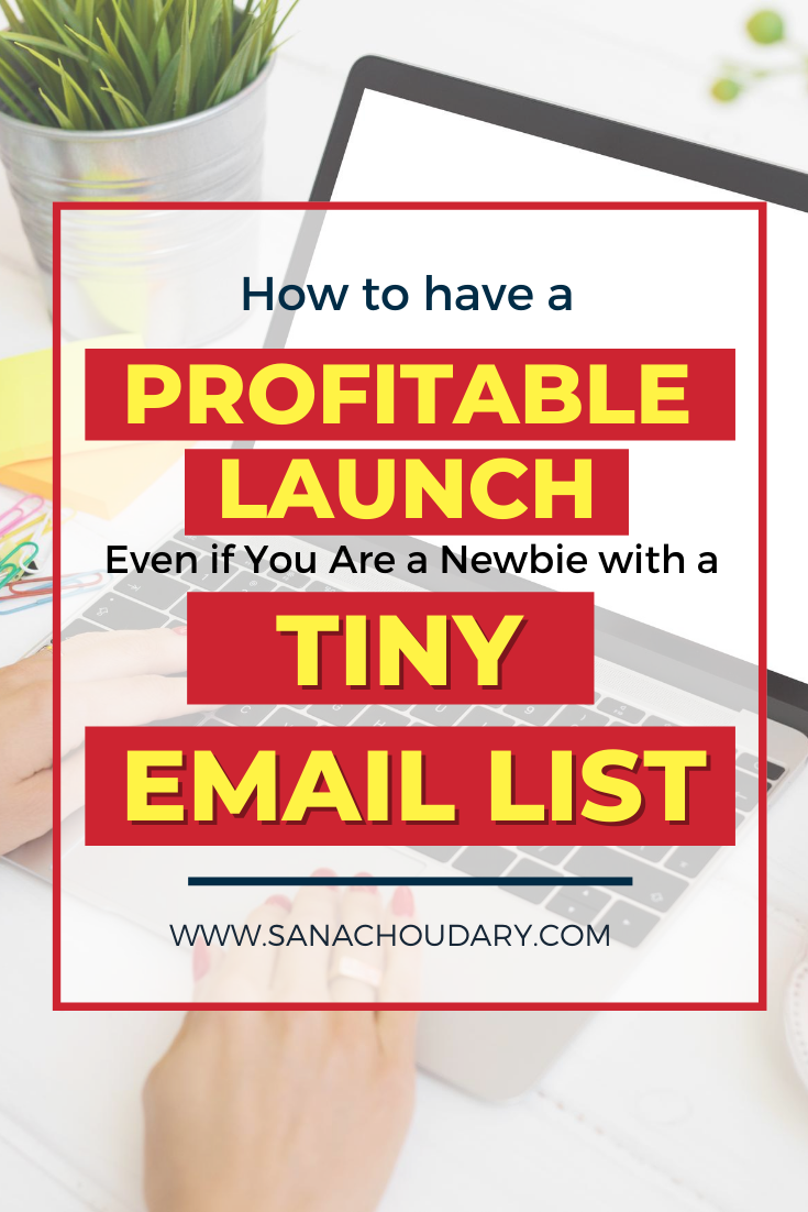 How to have a profitable launch if you are a newbie with a tiny email list